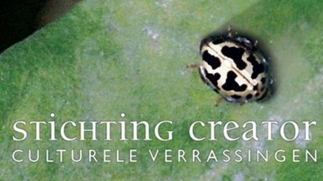 Stichting Creator